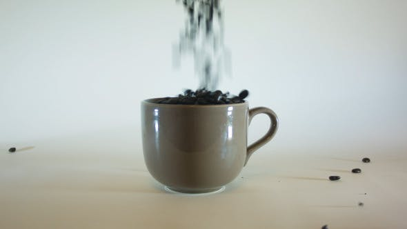 Thumbnail for Pouring Coffee Beans In Mug