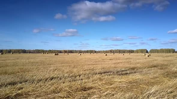 Thumbnail for Aerial Motion Over Dry Stubble Field To Straw Roll By Forest