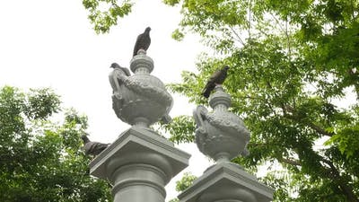 Birds with Fence Sculpture