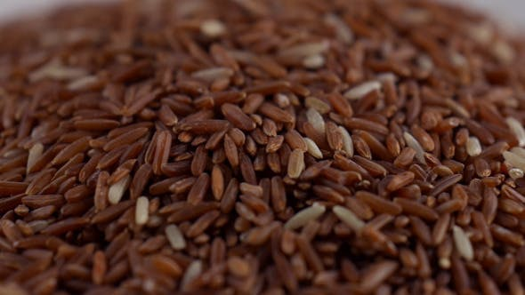 Thumbnail for Brown Rice On White Dish