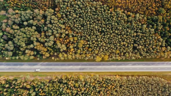 Thumbnail for Aerial Top Down Drone Shot Cars Driving Along Straight Country Road in Autumn Forest. Fall Season