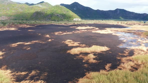 Black scorched ground as a result of controlled burning of a marsh wetland - prescribed fire