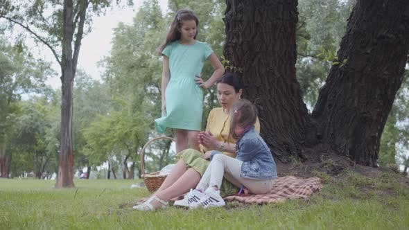 Cover Image for Portrait Happy Grandmother Teaching Her Granddaughters While Sitting in the Beautiful Park Near Big