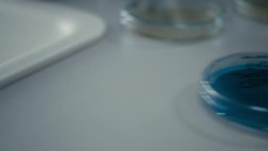 Thumbnail for Petri Dish with Coronavirus Sample