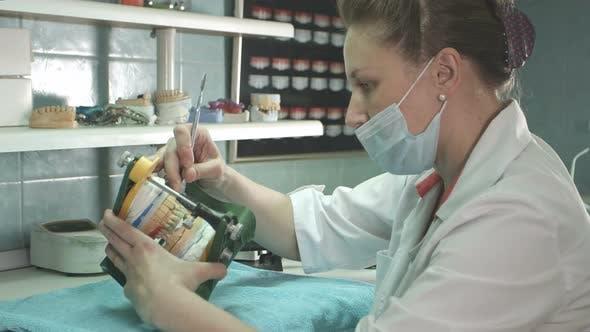 Dentist Hands Holding a Jaw, Making Dental Implant
