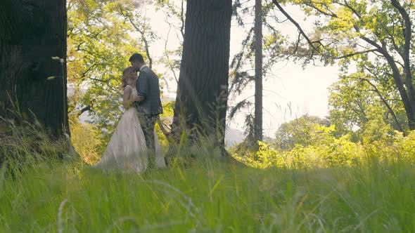 Young Couple Who Met in the Woods Near the Trees on a Background of Sunlight. The Newlyweds Gently