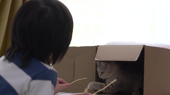 Mignon Asiatique Enfant Nourrir Snack Chats