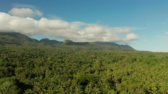 Thumbnail for Mountains Covered with Rainforest, Philippines, Camiguin