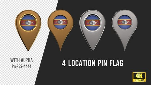 Swaziland Flag Location Pins Silver And Gold