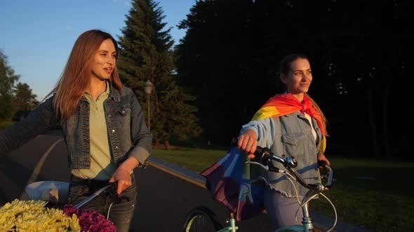 Cover Image for Happy Lesbian Couple Talking During Walk in Park
