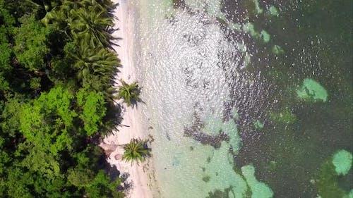 Caribbean White Unspoiled Beach
