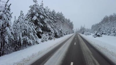 By car on a snowy forest road