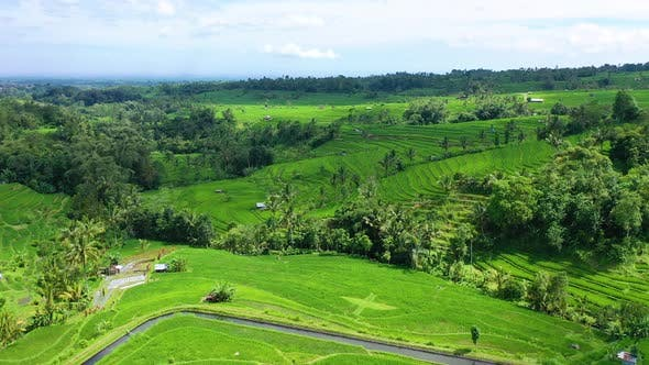 Thumbnail for Bali, Indonesia, Aerial View of Rice Terraces