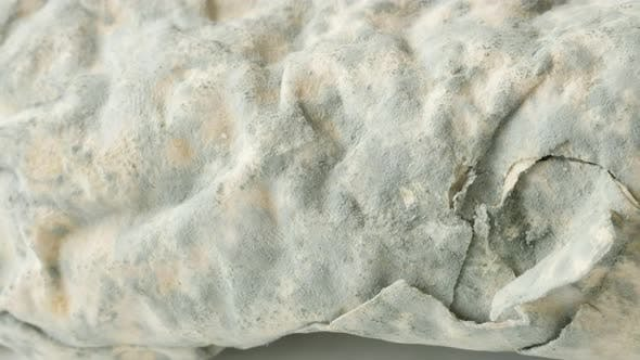 Thumbnail for Contaminated phyllo dough with    hyphae fungus 4K 2160p 30fps UltraHD panning  footage - Spreding o