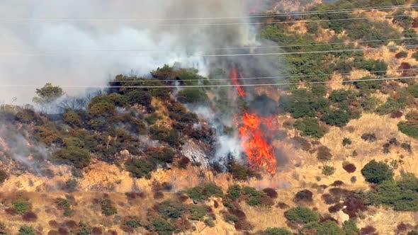 Thumbnail for Wildfire in California, USA. Destructive Fire and Thick Puffs of Smoke Are Seen on the Hills.