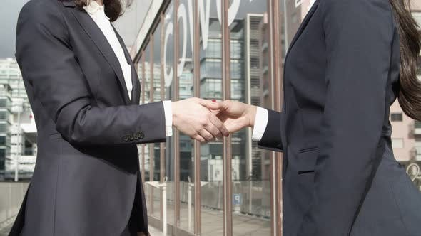 Thumbnail for Partial View of Coworkers Shaking Hands