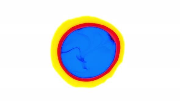 Multicolored Acrylic Paint