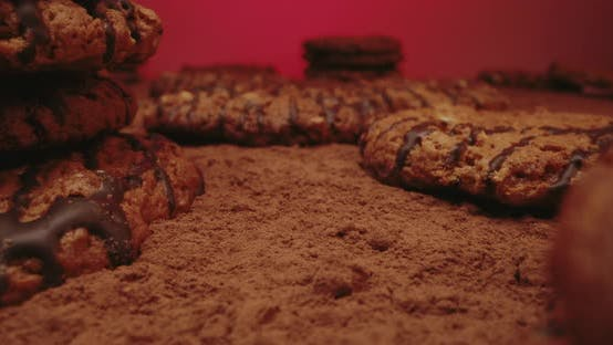 Thumbnail for Biscuits Lying on Cocoa Powder