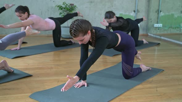 Thumbnail for Group of Women Stretching in Hall