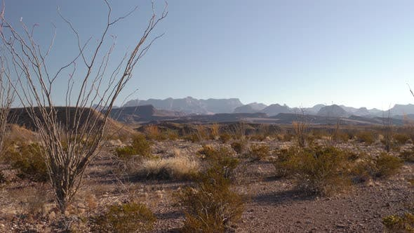 Thumbnail for Desert Dry Season in Big Bend National Park Texas United States