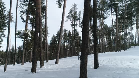 Thumbnail for Snowboarding In Ski Center Forest Aerial View