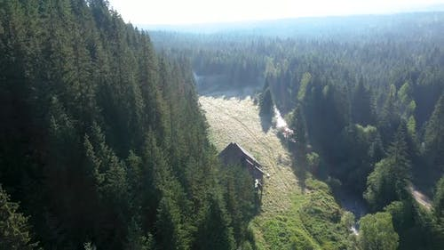 Flying Over a Misty Pinewood Forest and a Lodge in Sunrise Lights