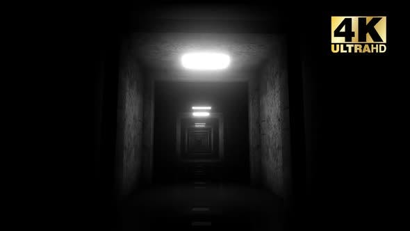 Cover Image for Light Corridor Loop
