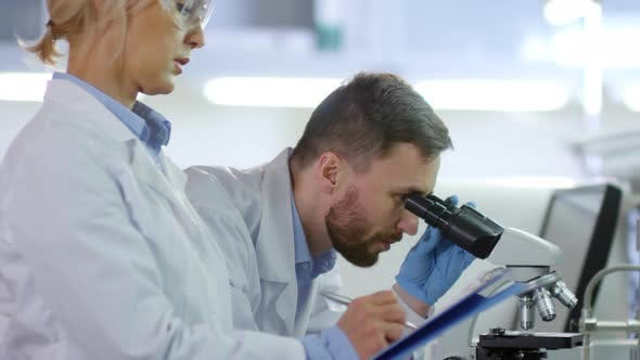 Two Researchers Working Together in Laboratory