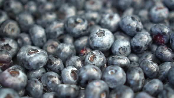 A Lot of Blueberries on the Market Close-up. The Camera Moves. Slow Motion.