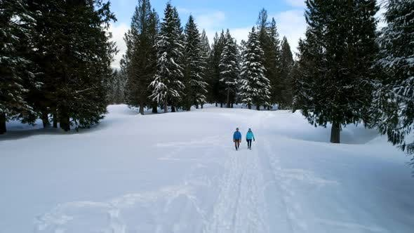 Couple walking on a snowy landscape during winter 4k