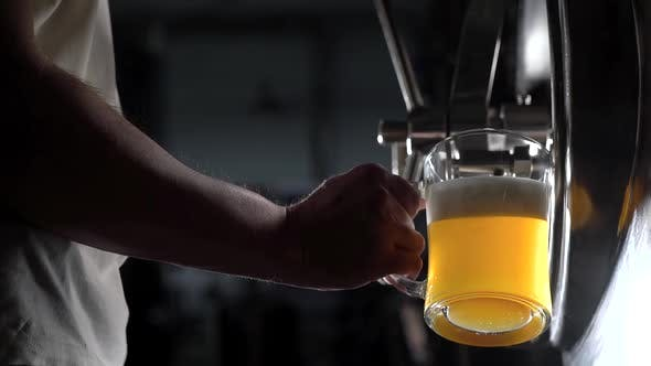 Thumbnail for Below Shot of a Brewery Worker Pouring Freshly-crafted Beed in a Glass To Test the Quality