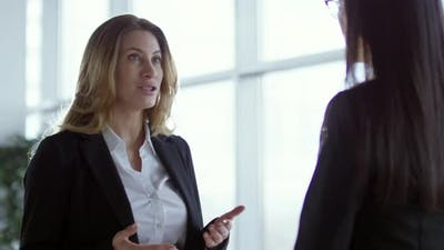 Businesswoman Talking with Client