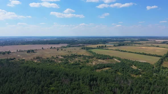 Thumbnail for Aerial View Summer Nature