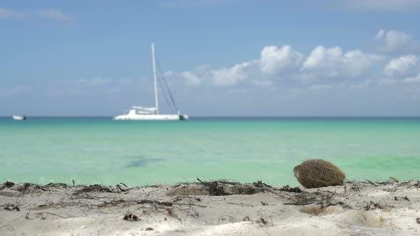 Thumbnail for Caribbean Feelings 02