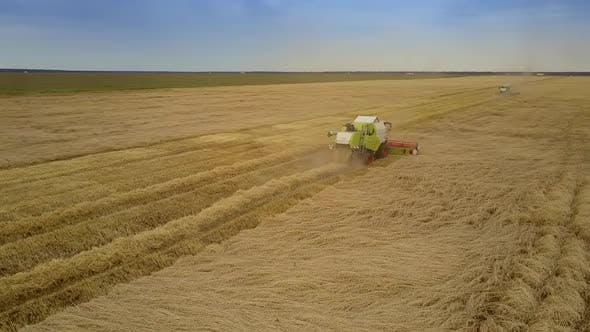 Thumbnail for Upper View Wheat Field with Combines Gathering Harvest