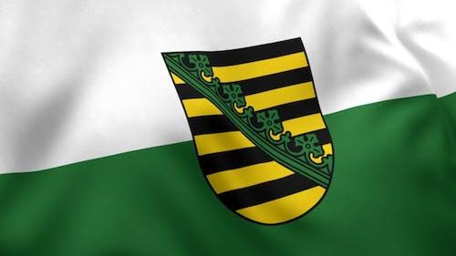 Drapeau de Saxe avec emblème