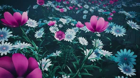 Thumbnail for Flower Field Loop #04