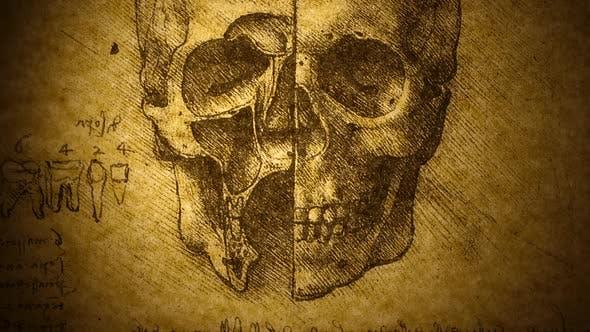 Thumbnail for AnatomyArt Drawing