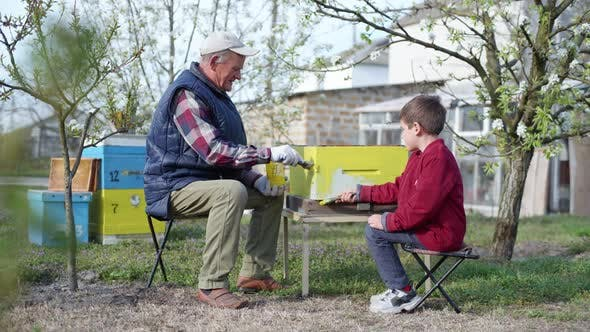 Thumbnail for Apiary, a Cute Little Boy in Place with Grandfather Prepare Old Beehive for Summer Season