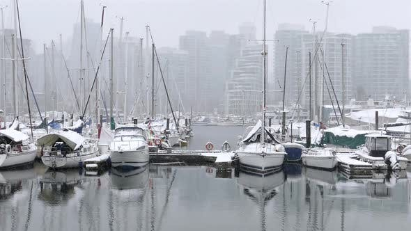 Thumbnail for Winter City - Snowy Harbour V