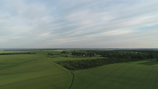 Green Fields And Dense Forests On A Background Of Blue Sky From An Aerial View