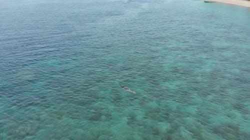 Aerial: woman snorkeling on Hatta Island coral reef tropical caribbean sea