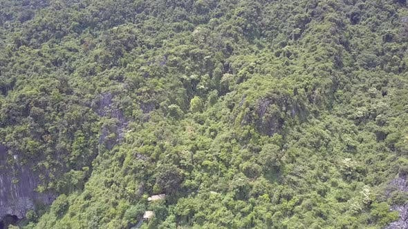 Thumbnail for Upper View Tropical Forest Covering Old Mountain in Park