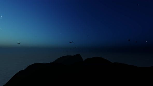 Thumbnail for Birds And Night Landscape