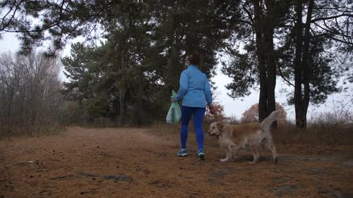 Eco Friendly Woman with Pet Doing Plogging in Wood
