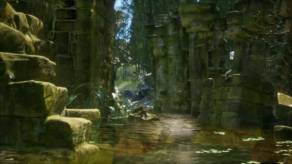 Thumbnail for Ruined Ancient Stone House Overgrown with Plants and Ferns in Dense Green Forest