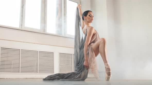 Ballerina in der Bühne lang Transparent Kostüm Tanz Modern Ballett
