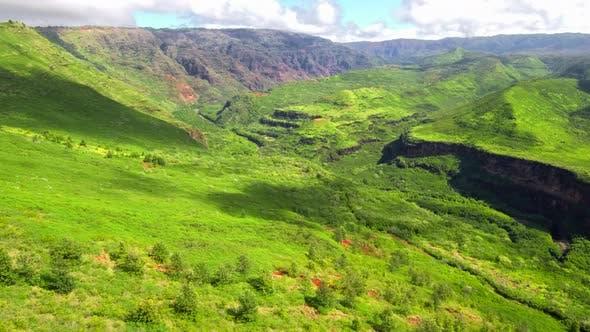 Sunny Green Waimea Canyon