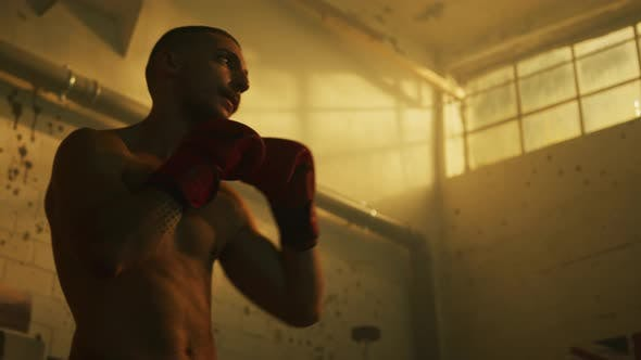 Thumbnail for Boxer warming up before training