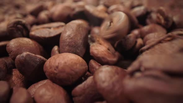 Thumbnail for Сoffee Beans are Falling